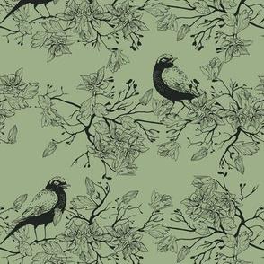 Birds in the bush