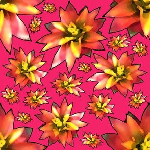 Painterly Bromelaid Flower Pink Stroke