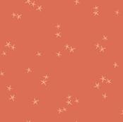 Pumpkin Stars { Coral }