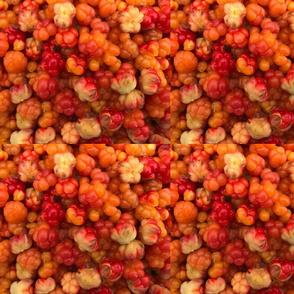 Salmon Berry Goodness
