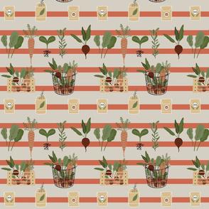 Garden Stripes Orange