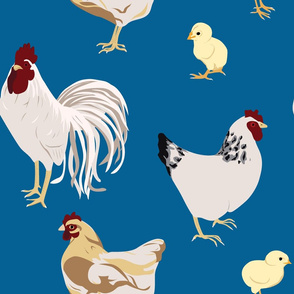Cluck Cluck Blue Large