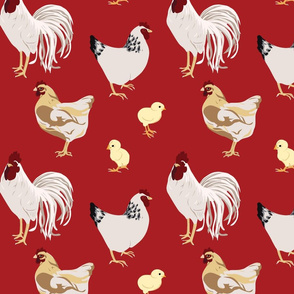 Cluck Cluck Red Medium