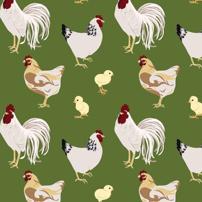Cluck Cluck Green Medium