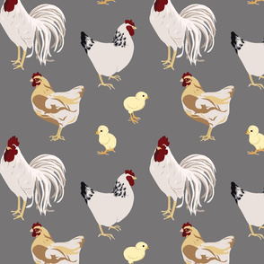 Cluck Cluck Grey (Medium)