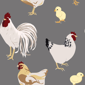 Cluck Cluck Grey (Large)