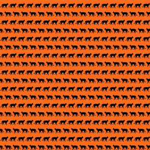 Little Black Cats On Orange