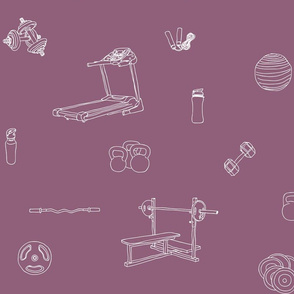 Gym Equipment Mauve