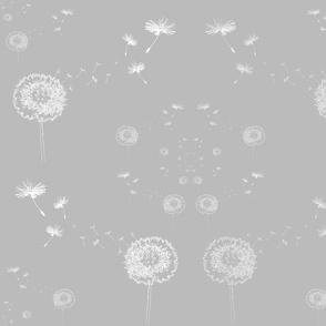 Infinite Wishes