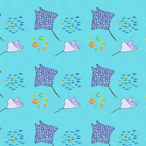 Rays & Fish