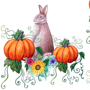 Rabbit and pumpkins on white