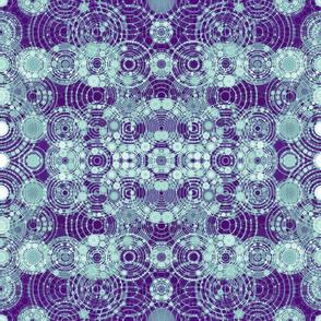 purple-green-cosmos