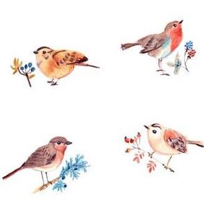 birdies only