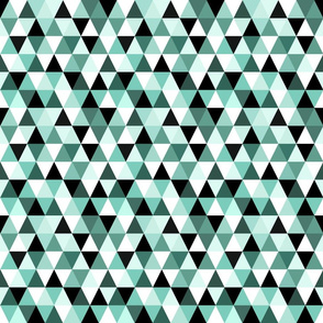 Tiny Triangles In Mint White And Black