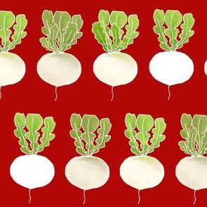 White Turnips  Strong Red