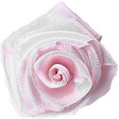 Ice Pink Rose
