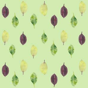 Leaf Moss Green