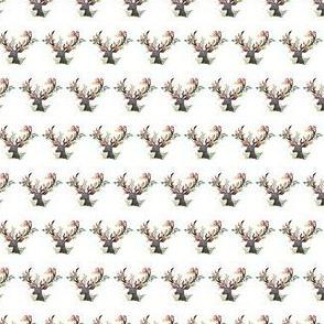 micro Deer_floral