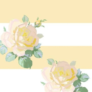 Seaside Garden Roses Stripe buttercup