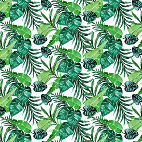 tropical greens//white S
