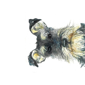Rrbuster_the_dog_f_spoonflower_design_challenge_shop_thumb