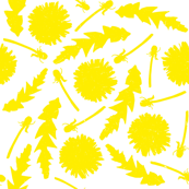 Dandelions with white background
