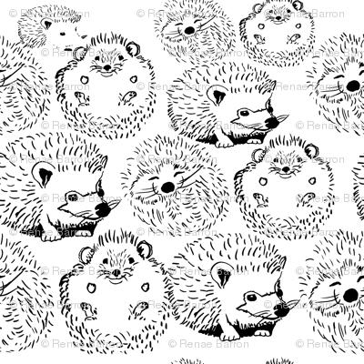 Hedgehogs_preview