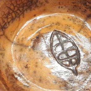 bronze apricot leaf