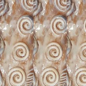 Fish skin spirals