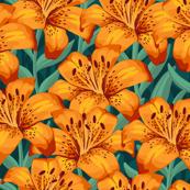 Orange Tiger Lilies- Large