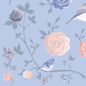 RANUNCULUS BIRD rose and blue large