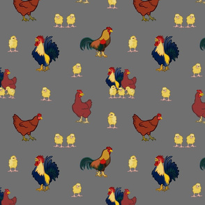 Chickens on Grey