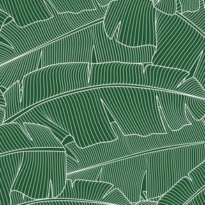 Banana Palm Leaves_Bg Green - 100%