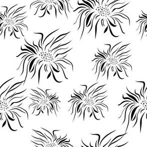 Black on White Floral