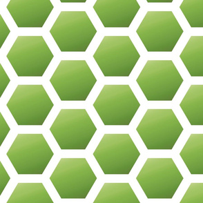 Honeycomb in Green
