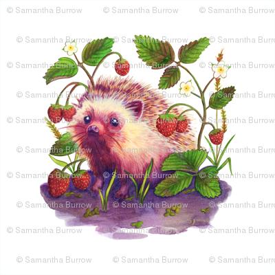 Rrrrhedgehog-8x8_preview