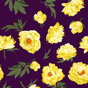 yellow peonies on dark purple