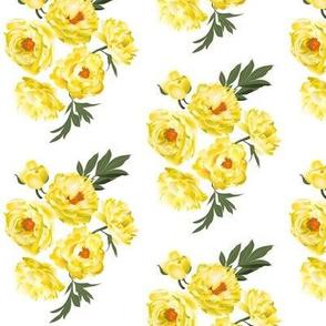 yellow peonies