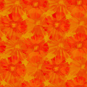 orange red_gold_flowers