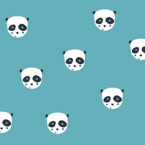 Panda bear in blue
