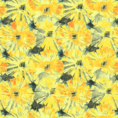 sunflower_yellow_asters