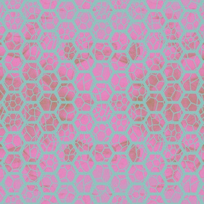 Lattice - teal and pink