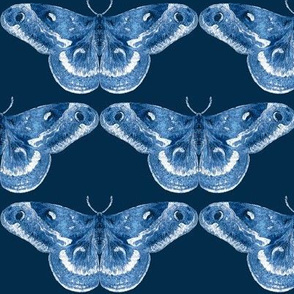 Luminous Delft Blue Mystic Moth with Navy