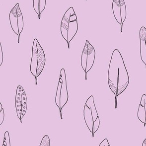 Federn rosa
