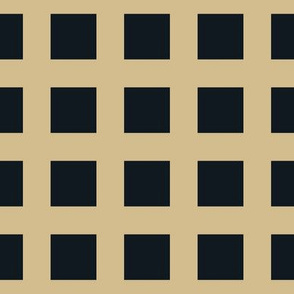 The Gold and the Black: So Square