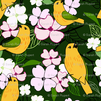 Yellow-warbler-6500_preview