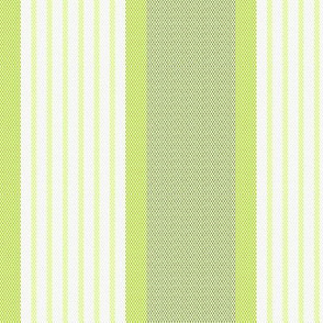 Ticking Triple Stripe in Yellow Green