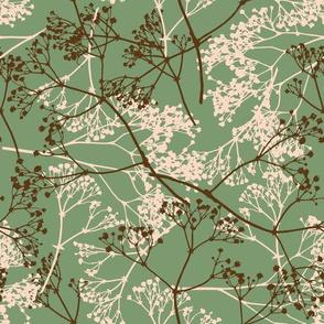 Gypsophila paniculata - floral botanical pattern