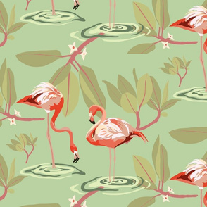 Flamingos and Mangroves