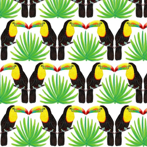 Toucans and Fanpalms 7""